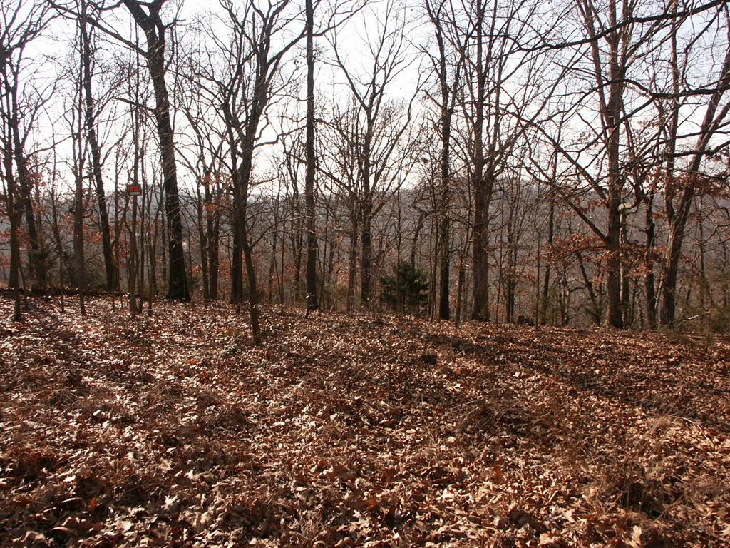 Bay Realty Inc Lot 2 Block 9 In The Mundell Heights